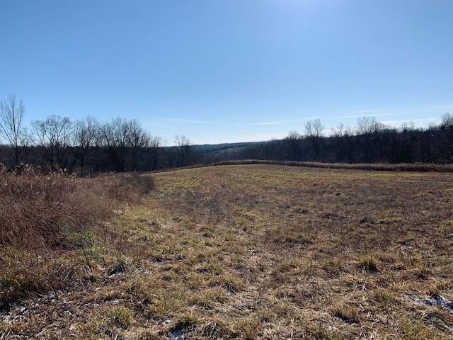 Photo 3 for 2285 Greenup Rd (85.8 acres) Owenton, KY 40359