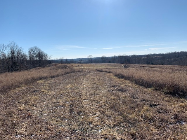 0 Greenup  Rd (64 +/- acres)