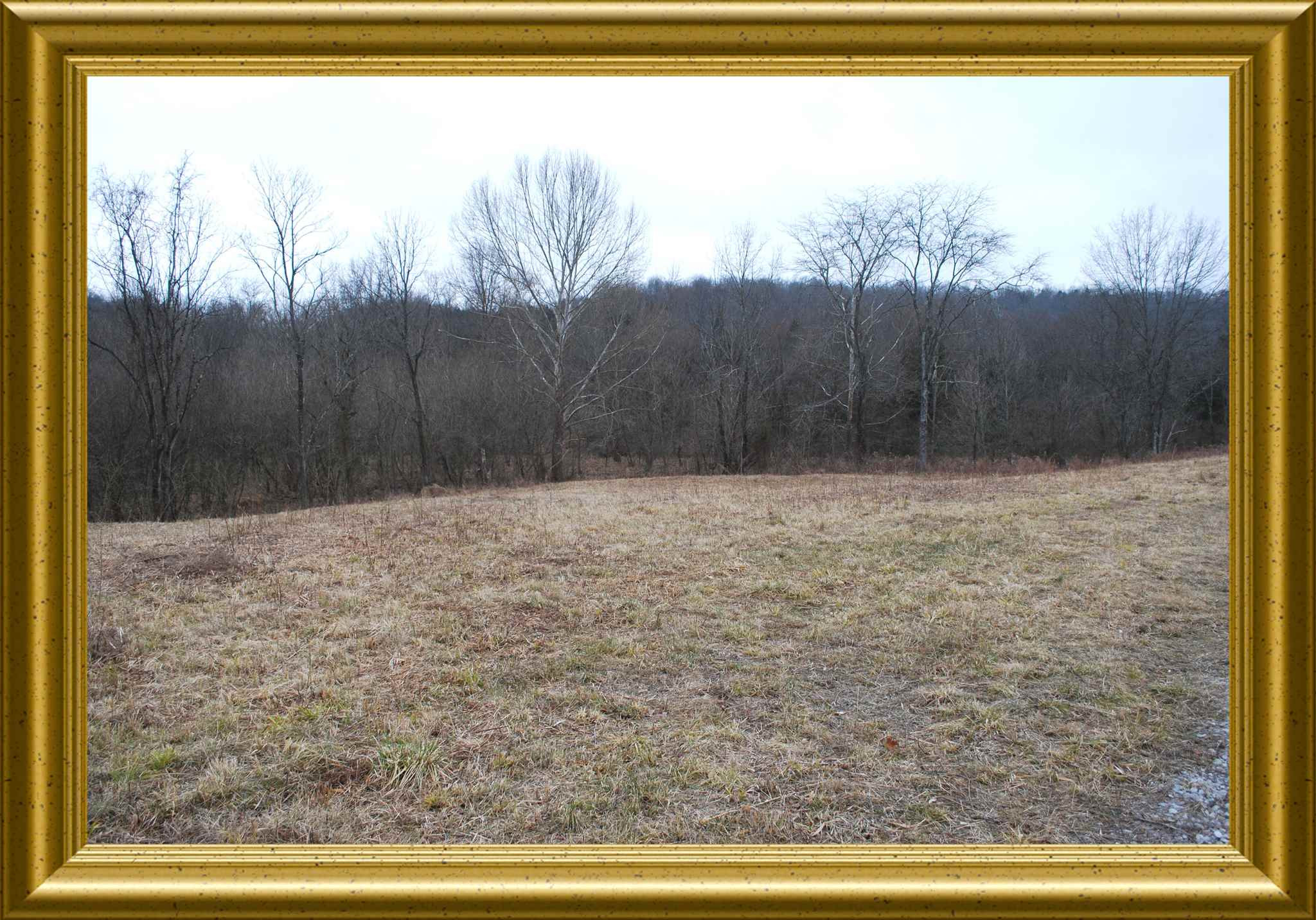 Photo 2 for 3710 Moffett Road Morning View, KY 41063