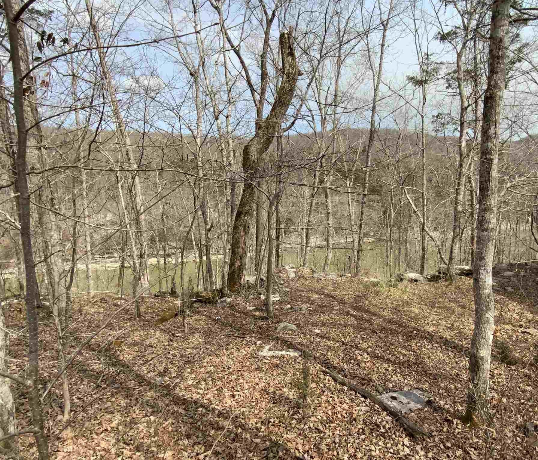Photo 2 for Sec 1 Buck Creek Hideaway #L7 L8 Burnside, KY 42501
