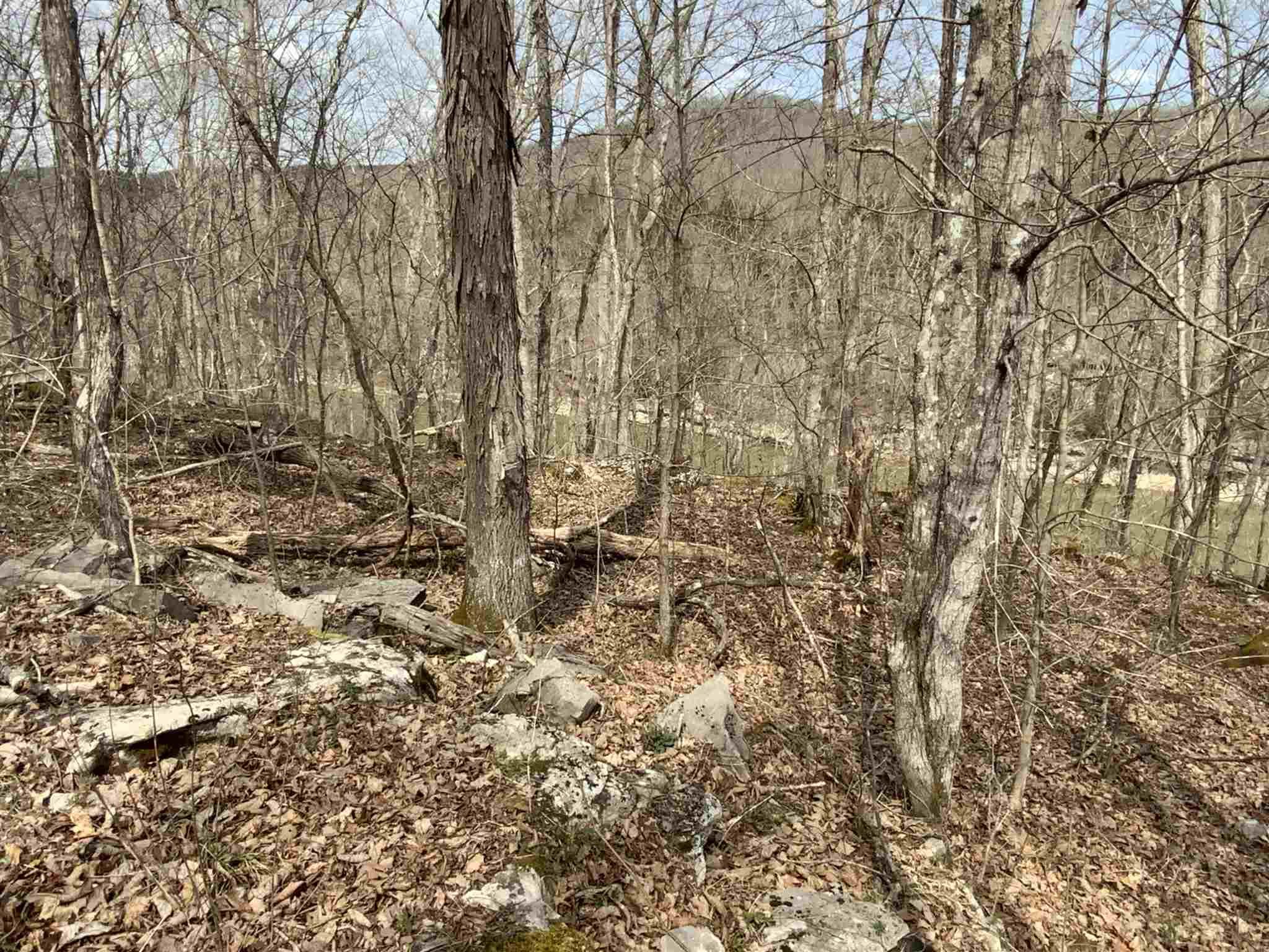Photo 3 for Sec 1 Buck Creek Hideaway #L7 L8 Burnside, KY 42501