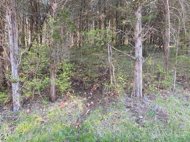 Photo 2 for 0 Pinhook Rd. Mt Olivet, KY 41064