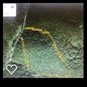 0 Pruitt Hollow Road