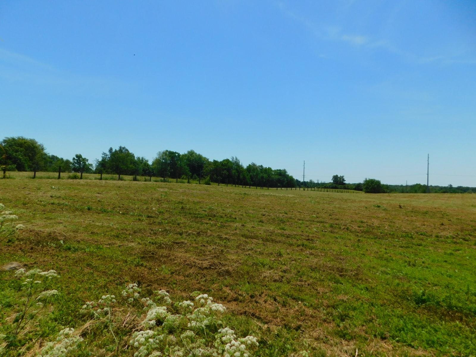 Photo 3 for 375 Morris Clark Road Waddy, KY 40065