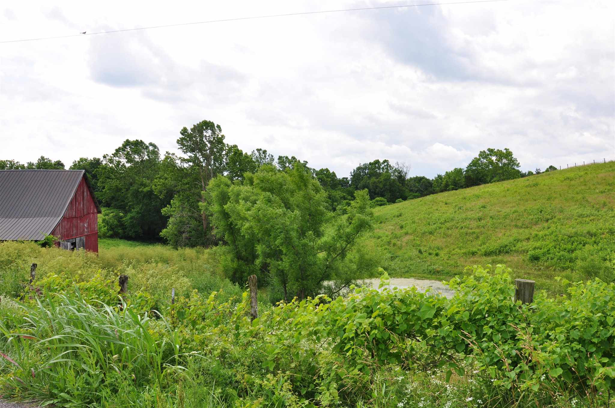 Photo 3 for 000 Abners Mill / Veale Ewing, KY 41039