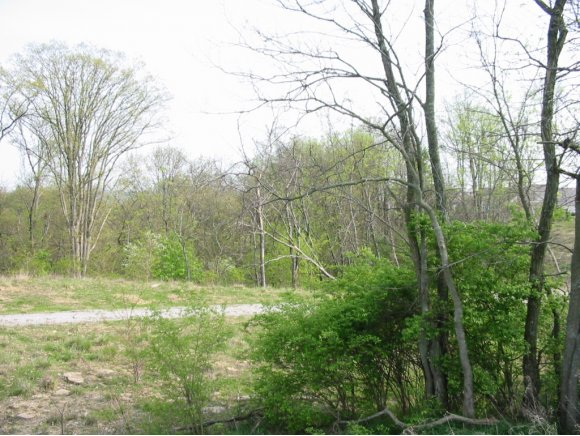 real estate photo 1 for AUGUSTA DR LAWRENCEBURG, IN 47025