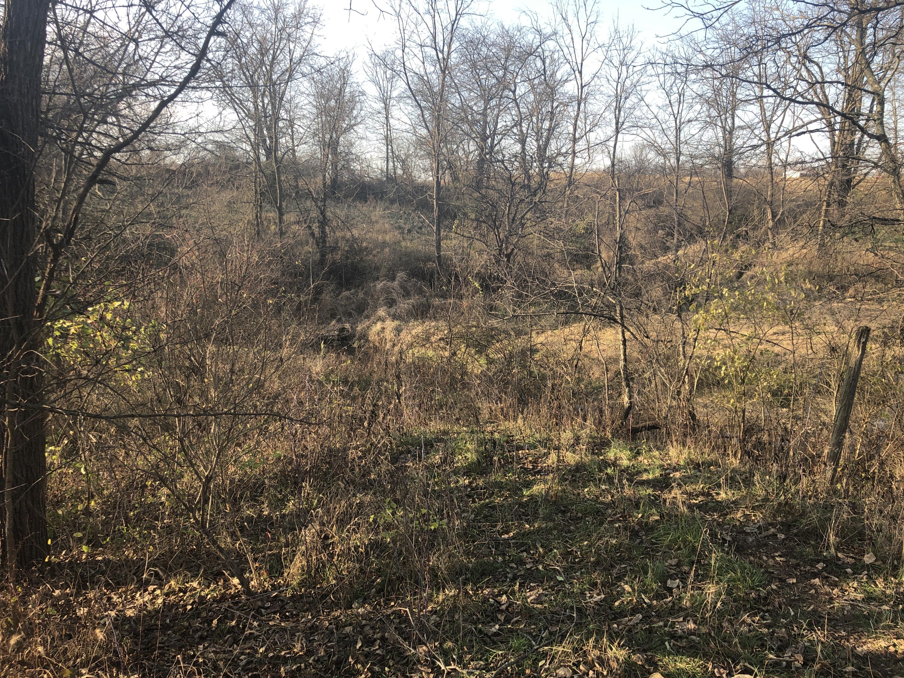Photo 1 for 0 S Township Rd 32 West Liberty, OH 43357